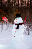 Snowman at sunset in wintery woods — Stock Photo