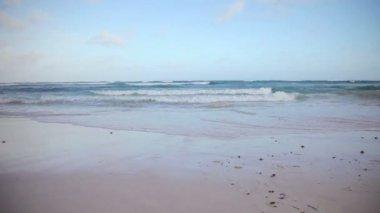 Dalgaları kıyıda breaking — Stok video