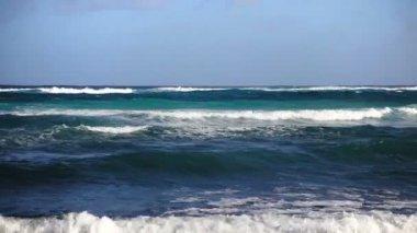 Ocean waves on the shoreline — Stock Video