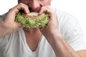 Adult Eating a Sandwich Full of Alfalfa Sprouts  — Stock Photo