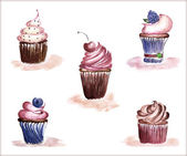 Cupcakes set — Stock Photo