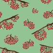 Seamless pattern with rowan — Stock Photo #41703119