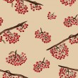 Seamless pattern with rowan — Stock Photo #41743271