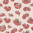 Seamless pattern with rowan — Stock Photo #41743477