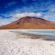 Laguna Verde with Salt flats, Bolivia — Stock Photo