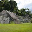 Palenque, Chiapas, Mexico — Stock Photo