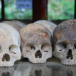 Killing Fields — Stock fotografie