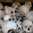 Killing Fields — Foto Stock