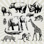 Set of Exotic Animals — Stock Vector #30845101