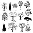 Hand Drawn Trees — Stock Vector