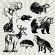 Wild Animals Hand Drawn — Vettoriali Stock