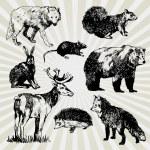 Wild Animals Hand Drawn — Stock Vector