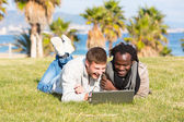Guys sharing computer in grass — Stock Photo