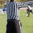 Football referee — Stock Photo #36873397
