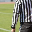 Football referee — Stock Photo #36873403