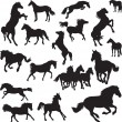 19 vector images of horses — Stock Vector #40162825