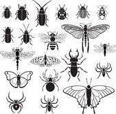 20 vector images of insects — Stock Vector