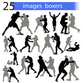 25 images boxers — Stock Vector