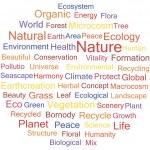 Environment — Stock Vector #48948991