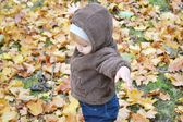 Baby boy in autumn leaves in the park — Stock Photo