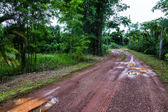 Dirt track through farm in Thailand — Stock Photo