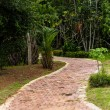 Stock Photo: Pathway in garden