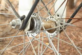 Bike wheel — Stock Photo