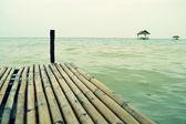 The bridge stretches to the sea. — Stockfoto