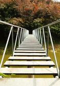 River Bridge — 图库照片