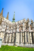 The cologne cathedral — Stock Photo