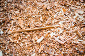 Sawdust — Stock Photo