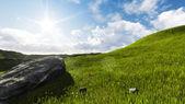 Góra pole — Zdjęcie stockowe