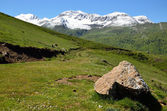 Green slopes of the spring Pyrenees — Stock Photo