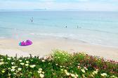 Spring beach Valdevaqueros — Stockfoto