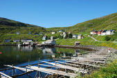 Summer view of fishing village Akkarfjord — Stockfoto