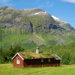 Wood house with green-roof under mountain — Stock Photo