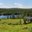Wood house near the blue lake in the taiga forest — Stock Photo #33549857