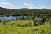 Wood house near the blue lake in the taiga forest — Stock Photo