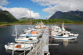 Pier with vessels mooring, Lofoten islands. — Stock Photo