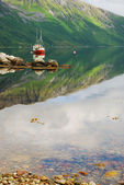 Norwegian fjord with red ship under green mountain. — Foto Stock