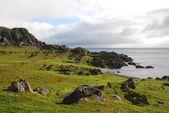 North seashore of Norway in summer — 图库照片