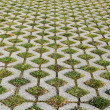 Grass pavement — Stock Photo