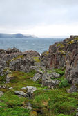 North seashore of Norway in summer — Foto de Stock