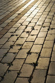 Block pavement with grass put out. — Stock Photo