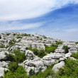 Stock Photo: Spring view of El Torcal nature reserve
