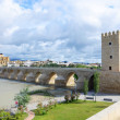 Roman bridge of Cordoba — Stock Photo