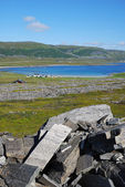 View of Mageroya with small village near the fjord. — Stock Photo