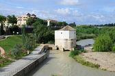 Guadalquivir river in Cordoba — Stock Photo