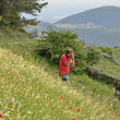 Photographer on the flowering slope — Stock Photo