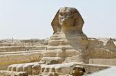 Great Sphinx of Giza — Stock Photo